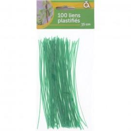 Liens x 100 Plastifiés  15 cm